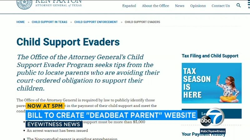 Texas Child Support Login Payment | Asbestos Meaning